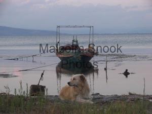 fishing boat labrador prevaza